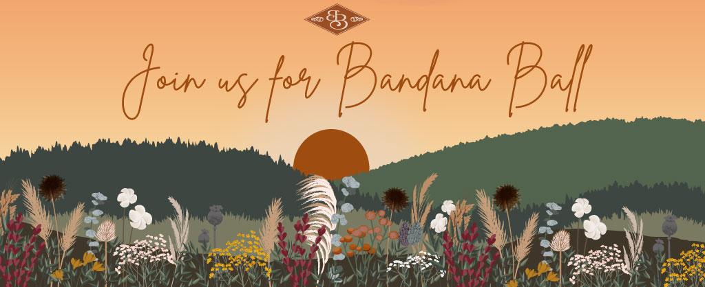 Bandana Ball Art and Title